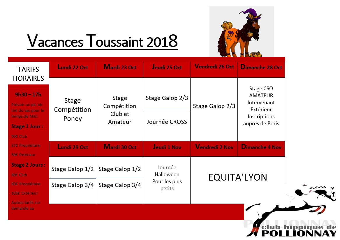 Stages d'équitation été 2018 à Lyon
